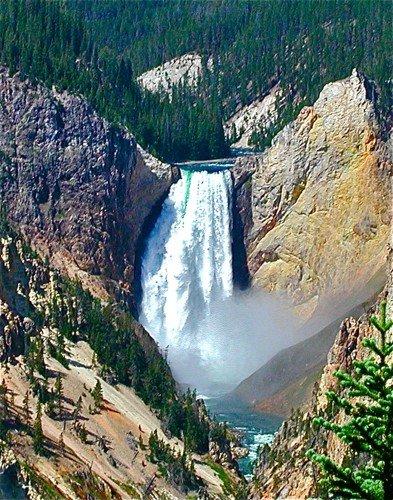 Yellowstone - Lower Falls